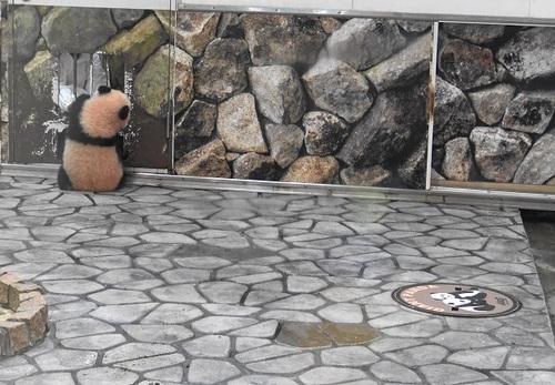 再登場する良浜と、収納扉を調べる結浜(3).jpg