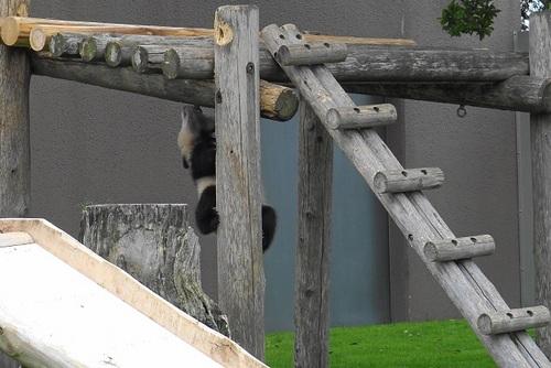 櫓から落ちた後、櫓に上る結品(4).jpg