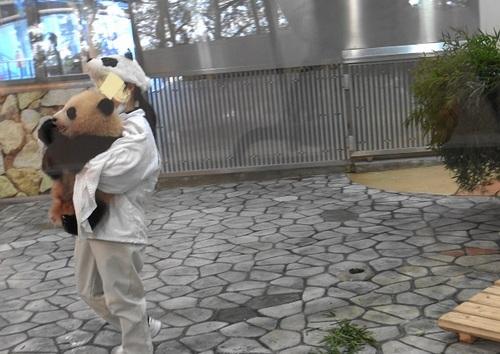 清掃中に飼育員さんに遊んでもらう結浜(3).jpg