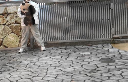 清掃中に飼育員さんに遊んでもらう結浜(6).jpg