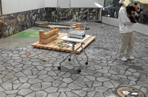 結浜、バイバイパレードの後に産室へ(8).jpg