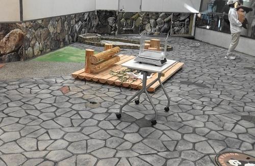 結浜、バイバイパレードの後に産室へ(9).jpg