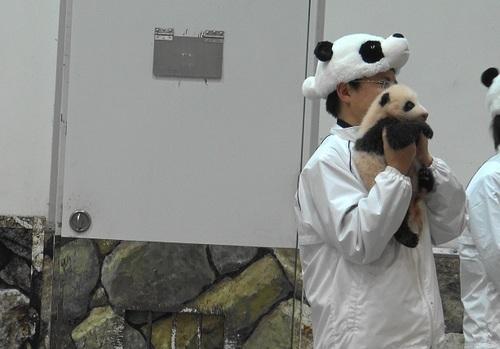 赤ちゃんパンダバイバイパレード2(18).jpg
