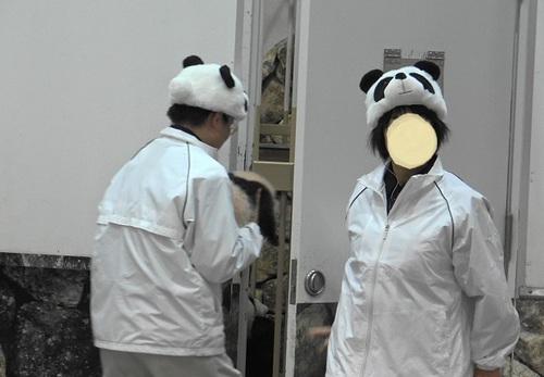 赤ちゃんパンダバイバイパレード2(20).jpg